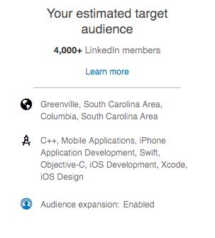 An example of LinkedIn ad targeting focusing on app developers
